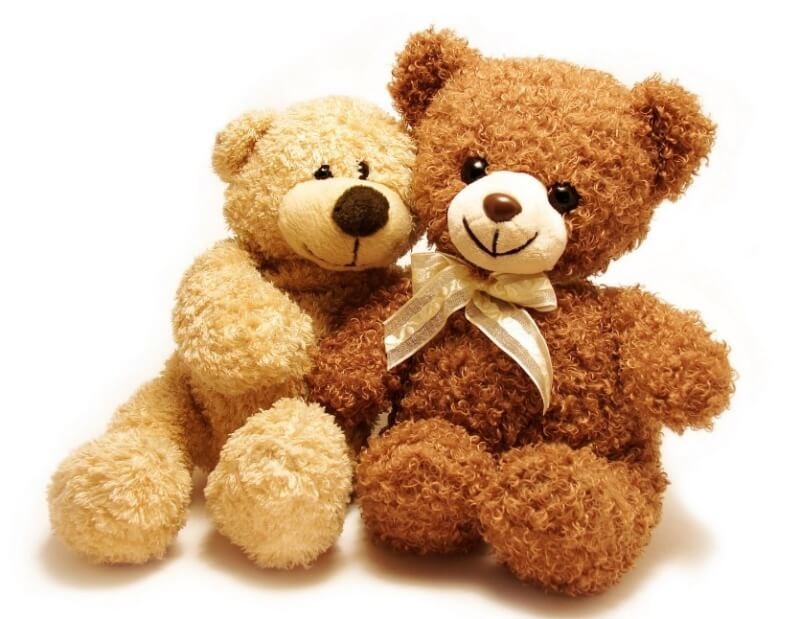 teddy-bear-bulu-keriting