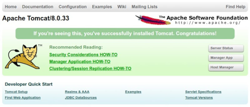 Apache Tomcat Web Server