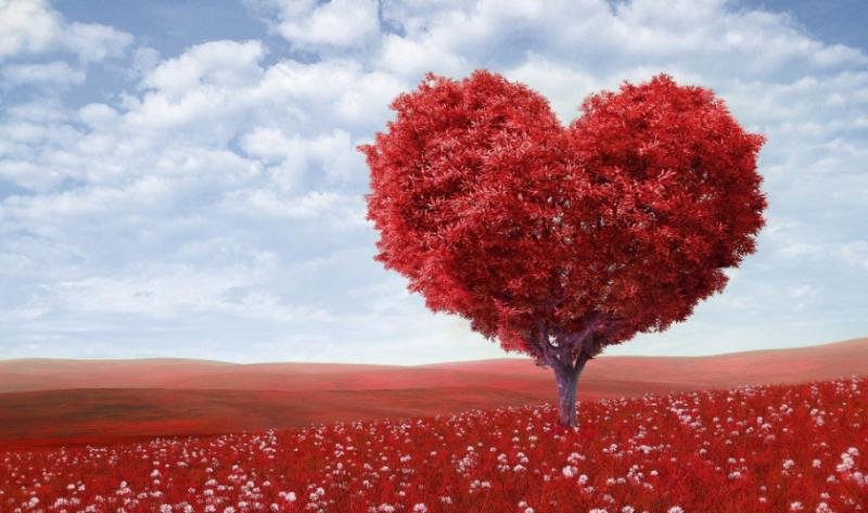 100 Kata Kata Cinta Sejati Romantis Bijak Dan Sedih Terbaru